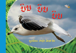 Fly, Fly, Fly! book cover