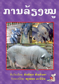 How to Care for Pigs book cover