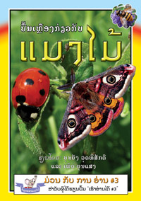 Yellow Book about Insects book cover