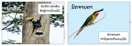 Samples pages from our book: Birds That I Know