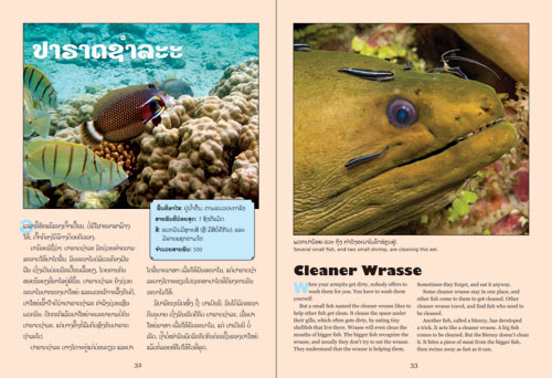 Samples pages from our book: Life in the Sea