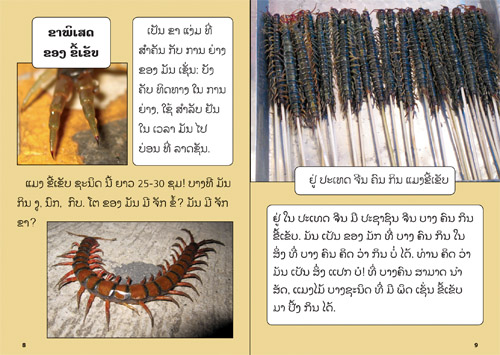 Samples pages from our book: Yellow Book about Insects